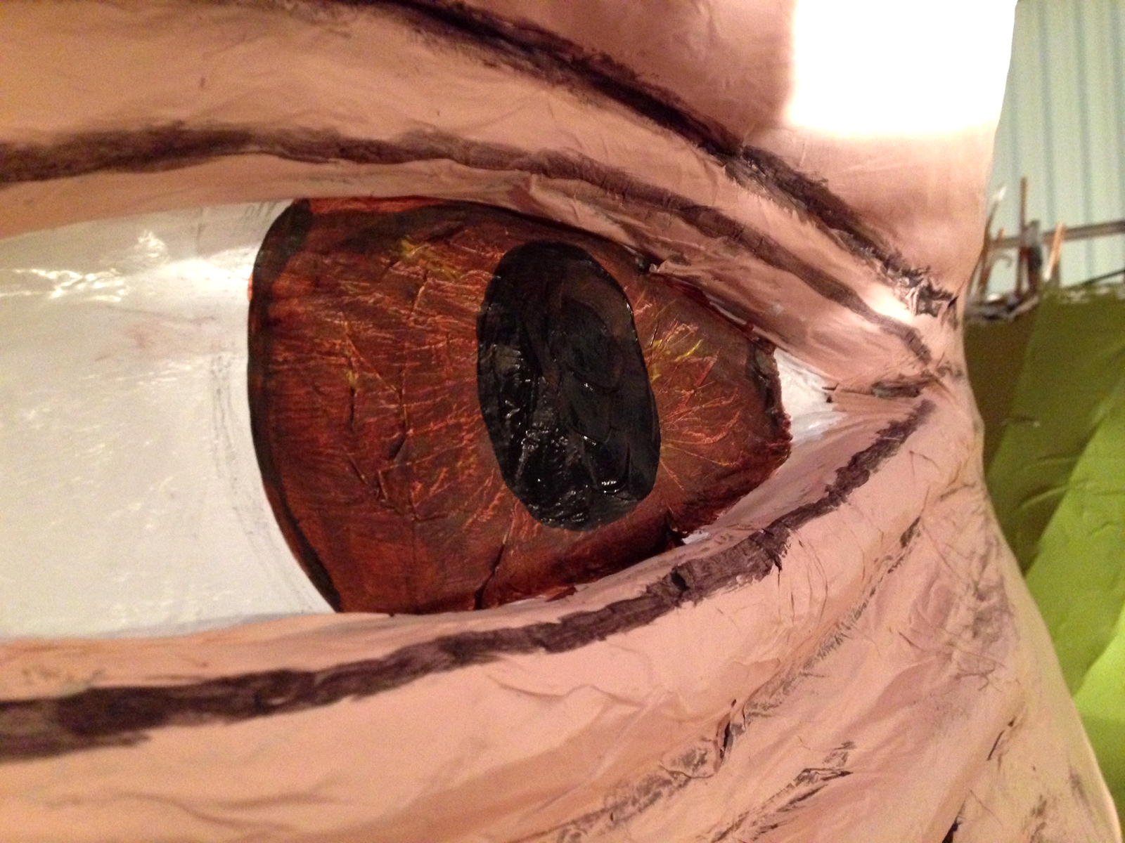 Eye detail.